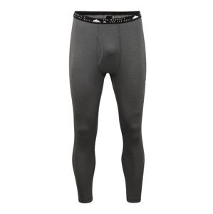 QUIKSILVER Sportovní spodní prádlo 'TERRITORY'  šedá