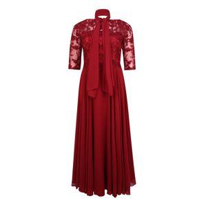 My Mascara Curves Společenské šaty 'EMB Sleeve'  vínově červená