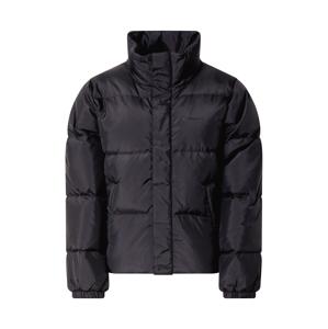 Carhartt WIP Zimní bunda 'Danville'  černá