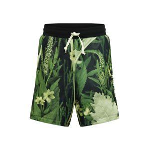 Nike Sportswear Kalhoty 'Alumni'  zelená / olivová