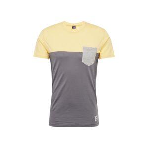 Iriedaily Tričko  citronová / čedičová šedá