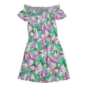 NAME IT Šaty  trávově zelená / světle fialová